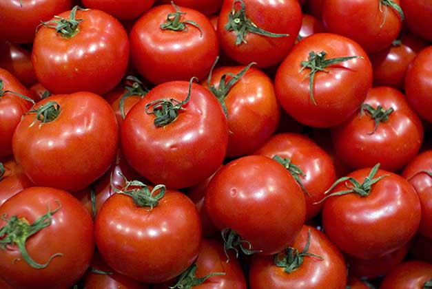 tomate_pele