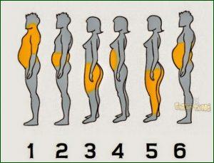 6tipos-de-gorduras-localizadas1