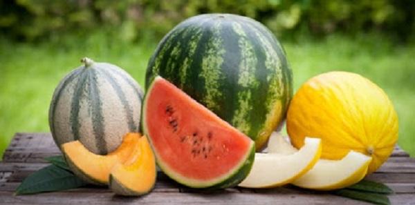 melancia e melão