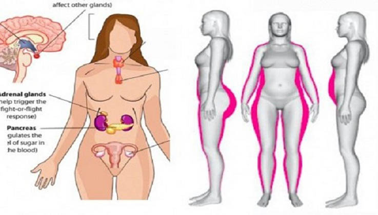 mulheres_imagem_hormonal