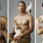 8 modelos com gatos absolutamente perfeitos!
